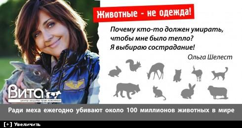 http://i6.imageban.ru/thumbs/2013.10.10/34b407b7df7972e7a8b8e5256d90876c.jpg