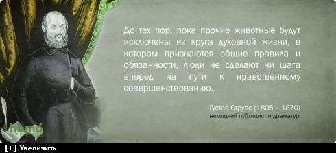 http://i6.imageban.ru/thumbs/2013.10.10/65e931d815ab3335eef98eebaacd780d.jpg