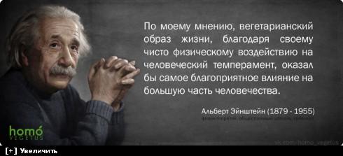 http://i6.imageban.ru/thumbs/2013.10.11/236c5679551a57256ed802885ae0e016.jpg