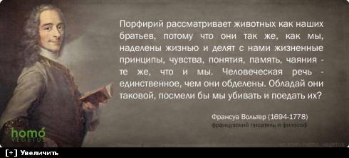http://i6.imageban.ru/thumbs/2013.10.11/a762e8a6d38b6cad117c868bd3099903.jpg