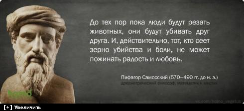 https://i6.imageban.ru/thumbs/2013.10.11/b0640198ed0483ac4b7239a8d035e585.jpg