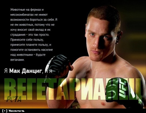 http://i6.imageban.ru/thumbs/2013.10.11/de183ddffaaf2f67b594ce1fef823677.jpg