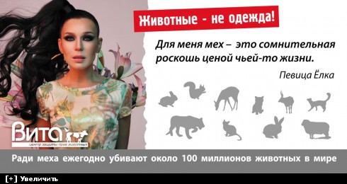 http://i6.imageban.ru/thumbs/2013.10.11/dfea545c0284dd1e3f9b64e8f57c5418.jpg