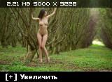 http://i6.imageban.ru/thumbs/2013.10.27/2505d6b72fcb85048117bacb6c411e2d.jpg
