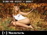 http://i6.imageban.ru/thumbs/2013.11.04/3e12611a6e116839f8381083210dadd0.jpg