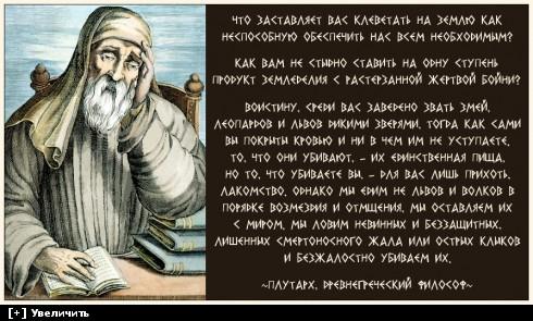 http://i6.imageban.ru/thumbs/2013.12.20/bd842c3f3803e9227bc3c6fe479059fe.jpg