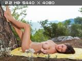 http://i6.imageban.ru/thumbs/2014.06.16/b925aacb4e89af3d2596f89d52dda61d.jpg