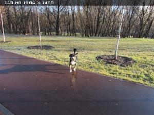 http://i6.imageban.ru/thumbs/2014.11.10/897be0b2b28807f671f05b6e4d3c1283.jpg