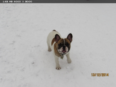 http://i6.imageban.ru/thumbs/2014.12.13/35f3c10f7893de63ad369da2447a2c15.jpg