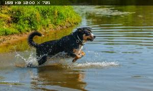 http://i6.imageban.ru/thumbs/2015.05.26/407da1eec3314f681b3b43740410b402.jpg