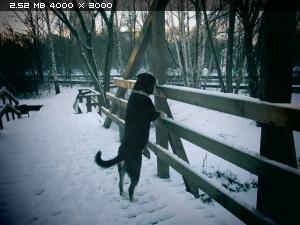 http://i6.imageban.ru/thumbs/2015.12.17/46d83609830633d869b4c3f7e9c30477.jpg