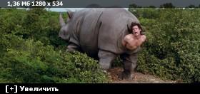 Эйс Вентура 2: Когда зовет природа / Ace Ventura: When Nature Calls (1995) BDRip 720p | D, P, P2, A