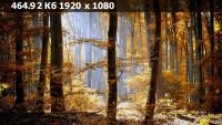 02f8ab23dfb10185161ab9d5360b085c.webp