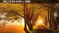 999b6b7a6829f7902fc88cf65f15965b.webp